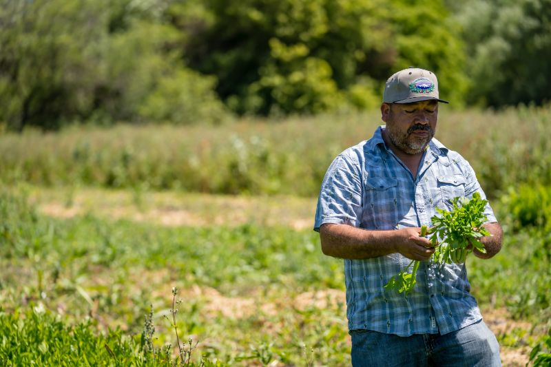 Growing Success for Sustainable Farming Movement